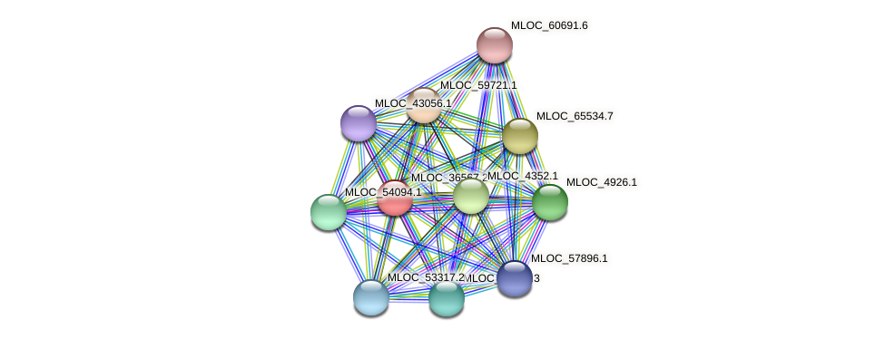 MLOC_36567.1 protein (Hordeum vulgare) - STRING interaction network