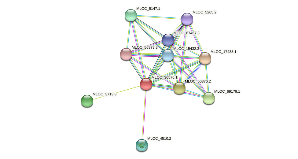 MLOC_36576.1 protein (Hordeum vulgare) - STRING interaction network
