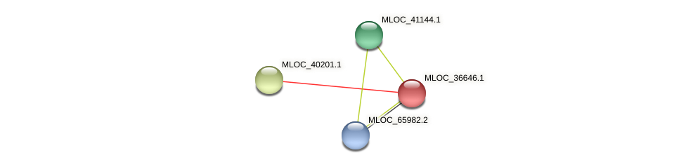 MLOC_36646.1 protein (Hordeum vulgare) - STRING interaction network