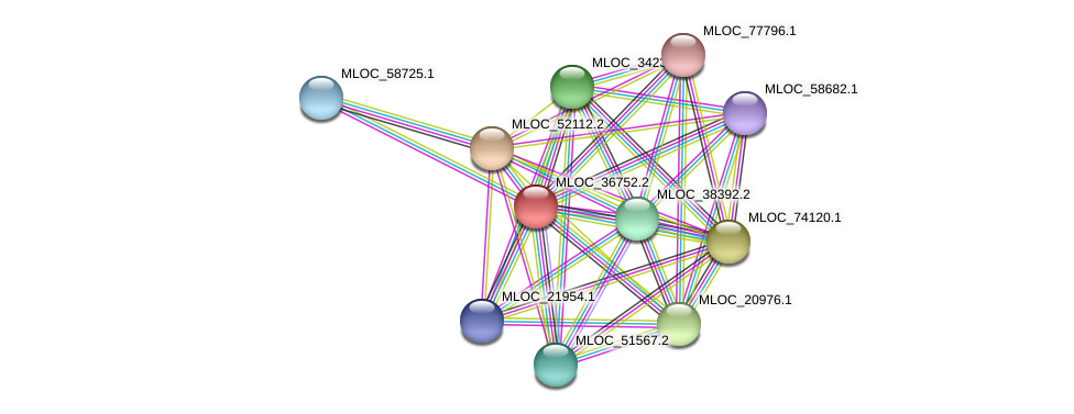 MLOC_36752.2 protein (Hordeum vulgare) - STRING interaction network