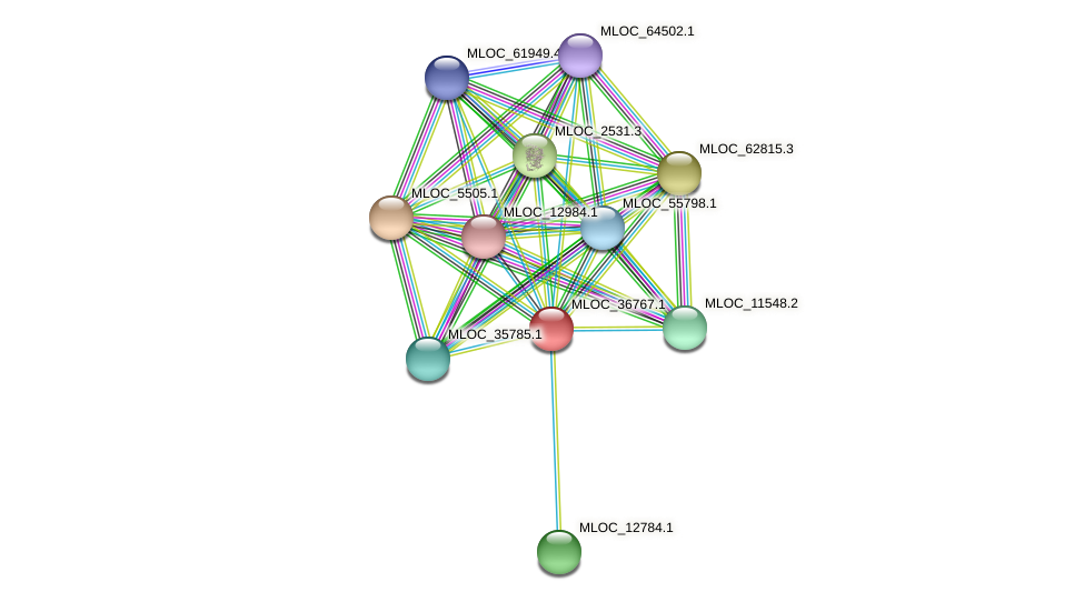MLOC_36767.1 protein (Hordeum vulgare) - STRING interaction network