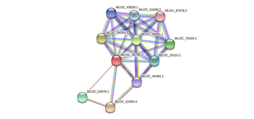 MLOC_36790.3 protein (Hordeum vulgare) - STRING interaction network