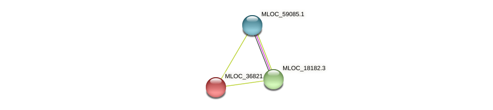 MLOC_36821.2 protein (Hordeum vulgare) - STRING interaction network