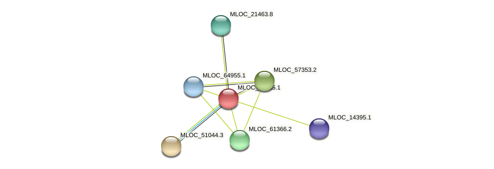 MLOC_36905.1 protein (Hordeum vulgare) - STRING interaction network