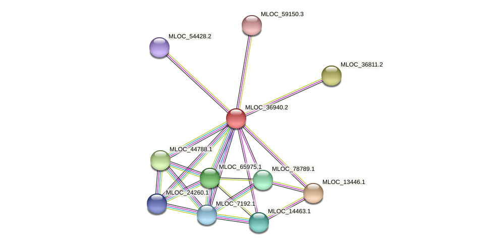 MLOC_36940.2 protein (Hordeum vulgare) - STRING interaction network