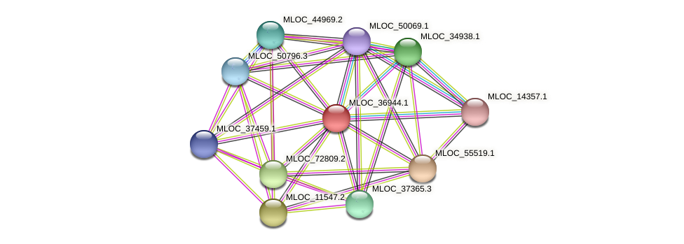 MLOC_36944.1 protein (Hordeum vulgare) - STRING interaction network