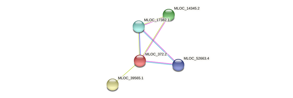 MLOC_372.2 protein (Hordeum vulgare) - STRING interaction network