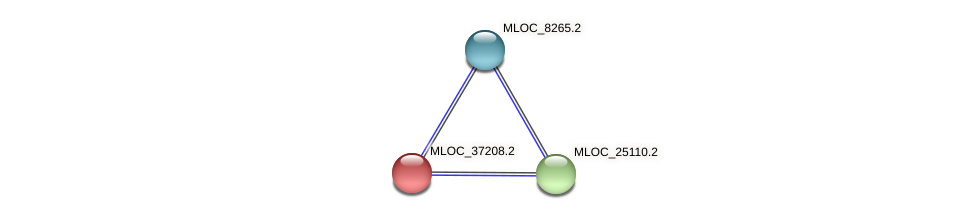 MLOC_37208.2 protein (Hordeum vulgare) - STRING interaction network
