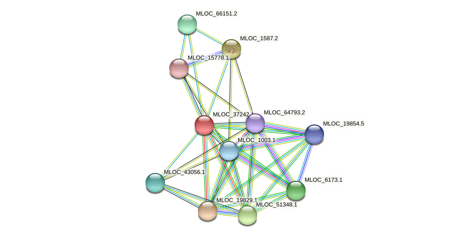 MLOC_37242.1 protein (Hordeum vulgare) - STRING interaction network