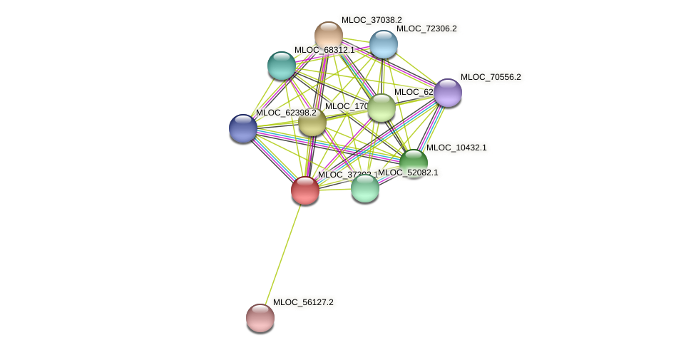 MLOC_37302.1 protein (Hordeum vulgare) - STRING interaction network