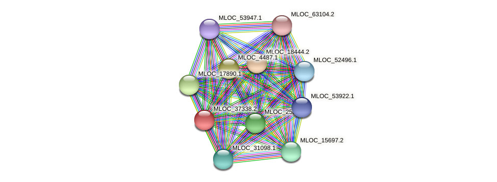 MLOC_37338.2 protein (Hordeum vulgare) - STRING interaction network