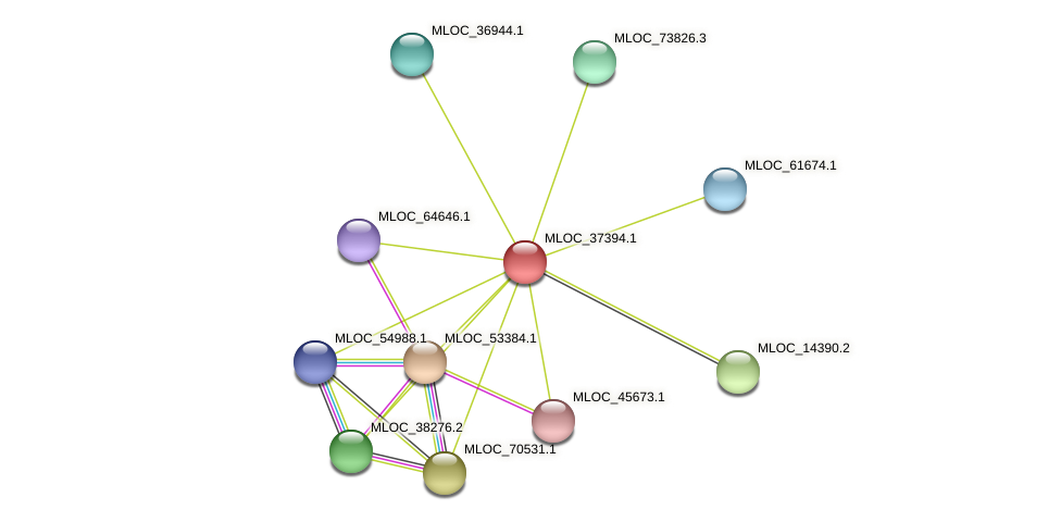 MLOC_37394.1 protein (Hordeum vulgare) - STRING interaction network