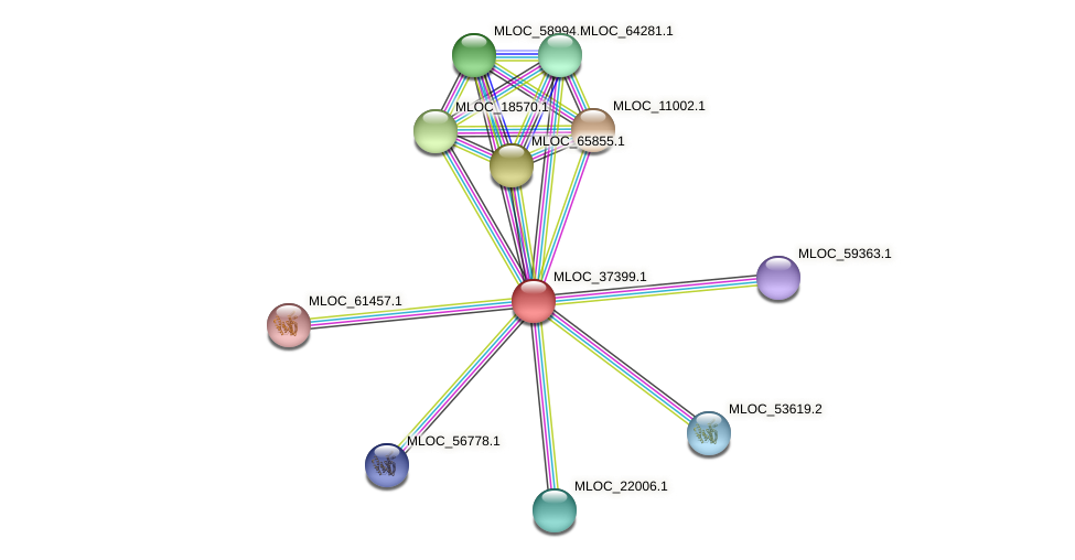 MLOC_37399.1 protein (Hordeum vulgare) - STRING interaction network