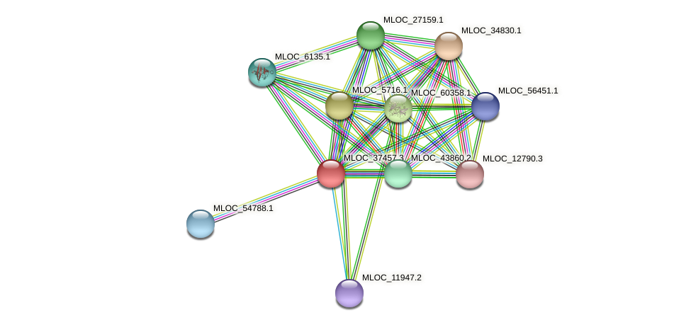 MLOC_37457.3 protein (Hordeum vulgare) - STRING interaction network
