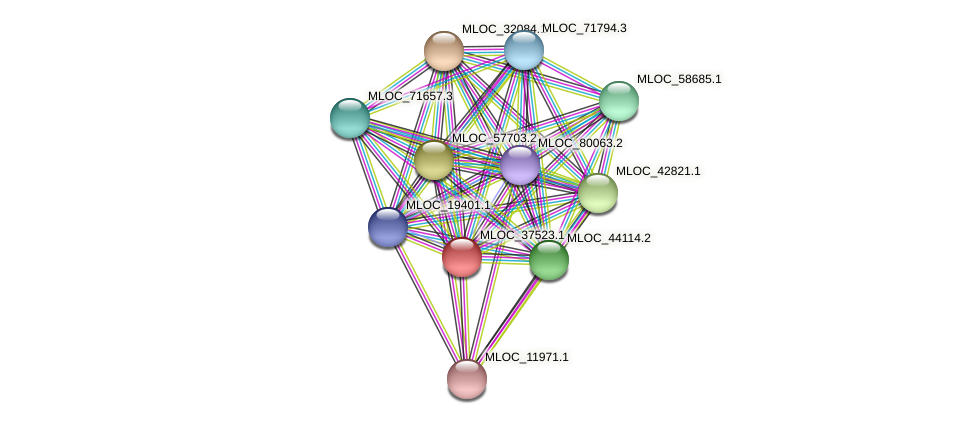 MLOC_37523.1 protein (Hordeum vulgare) - STRING interaction network