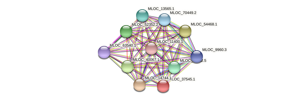 MLOC_37545.1 protein (Hordeum vulgare) - STRING interaction network