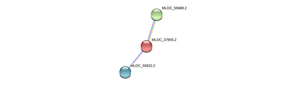 MLOC_37655.1 protein (Hordeum vulgare) - STRING interaction network