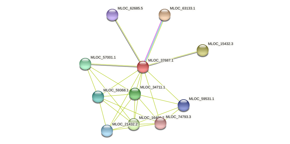 MLOC_37687.1 protein (Hordeum vulgare) - STRING interaction network