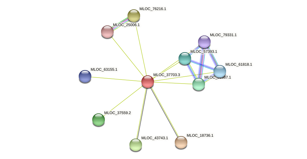 MLOC_37703.1 protein (Hordeum vulgare) - STRING interaction network