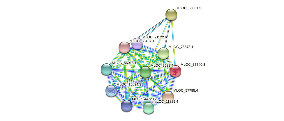 MLOC_37740.3 protein (Hordeum vulgare) - STRING interaction network