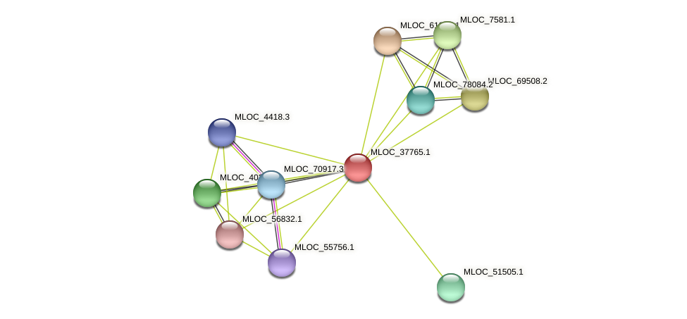 MLOC_37765.1 protein (Hordeum vulgare) - STRING interaction network