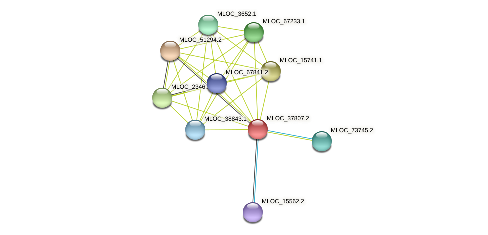 MLOC_37807.2 protein (Hordeum vulgare) - STRING interaction network