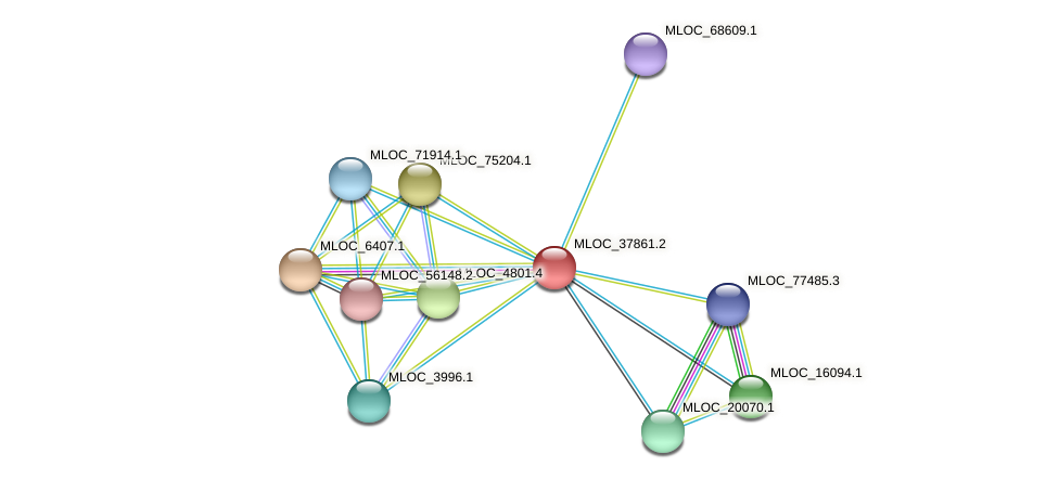 MLOC_37861.2 protein (Hordeum vulgare) - STRING interaction network