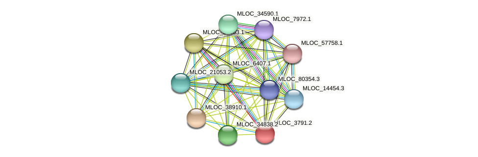 MLOC_3791.2 protein (Hordeum vulgare) - STRING interaction network