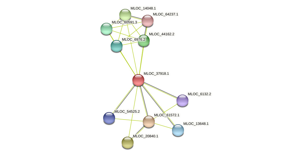 MLOC_37918.1 protein (Hordeum vulgare) - STRING interaction network