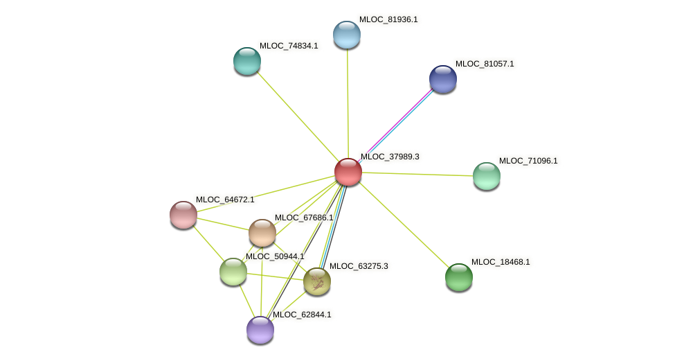 MLOC_37989.3 protein (Hordeum vulgare) - STRING interaction network