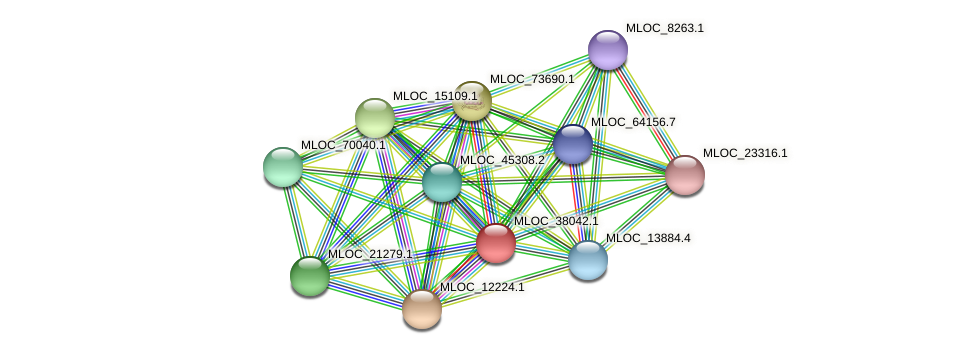 MLOC_38042.1 protein (Hordeum vulgare) - STRING interaction network