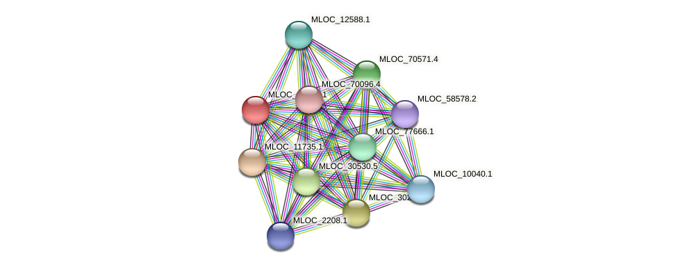 MLOC_38086.1 protein (Hordeum vulgare) - STRING interaction network