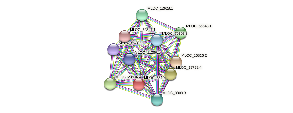MLOC_38100.2 protein (Hordeum vulgare) - STRING interaction network