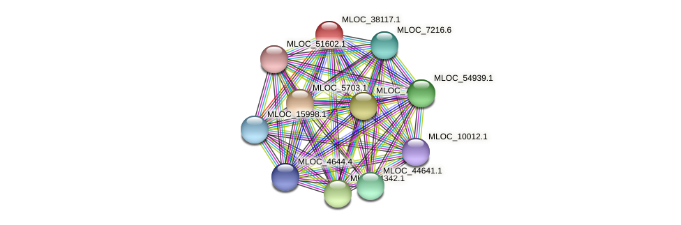 MLOC_38117.1 protein (Hordeum vulgare) - STRING interaction network