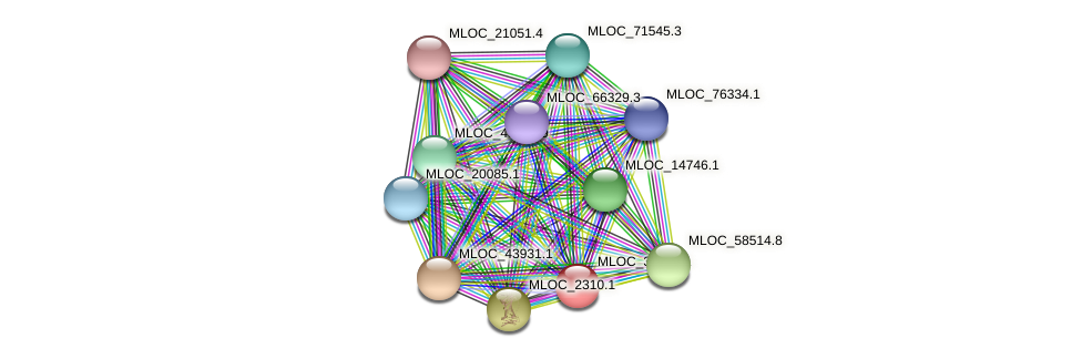 MLOC_38120.1 protein (Hordeum vulgare) - STRING interaction network