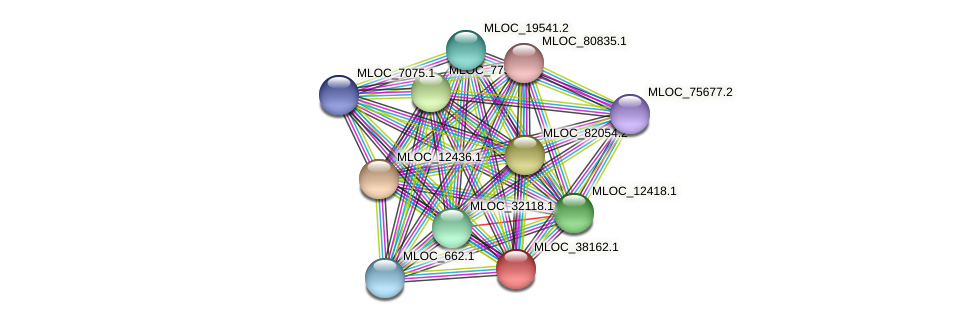 MLOC_38162.1 protein (Hordeum vulgare) - STRING interaction network