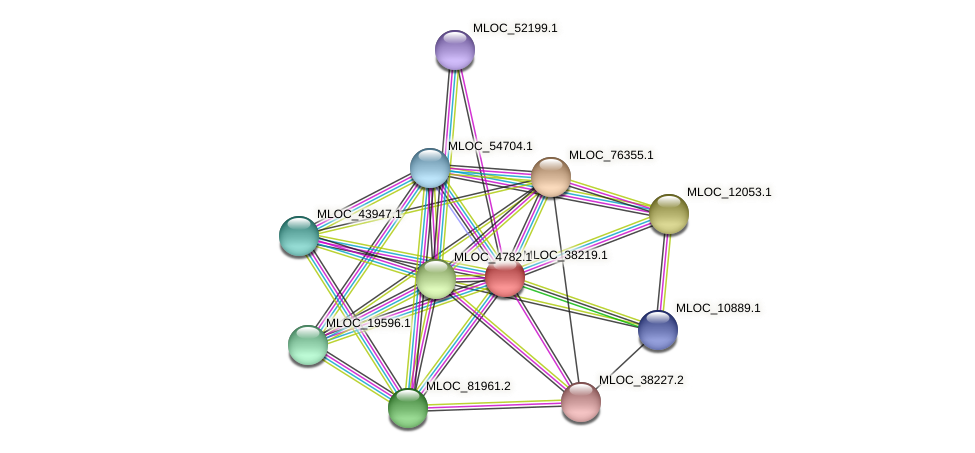 MLOC_38219.1 protein (Hordeum vulgare) - STRING interaction network