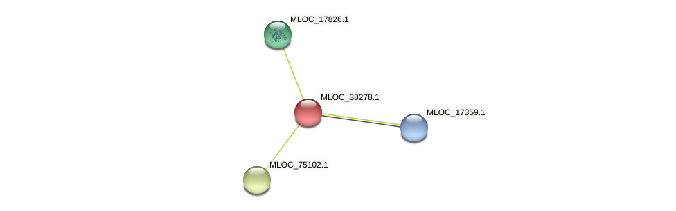 MLOC_38278.1 protein (Hordeum vulgare) - STRING interaction network