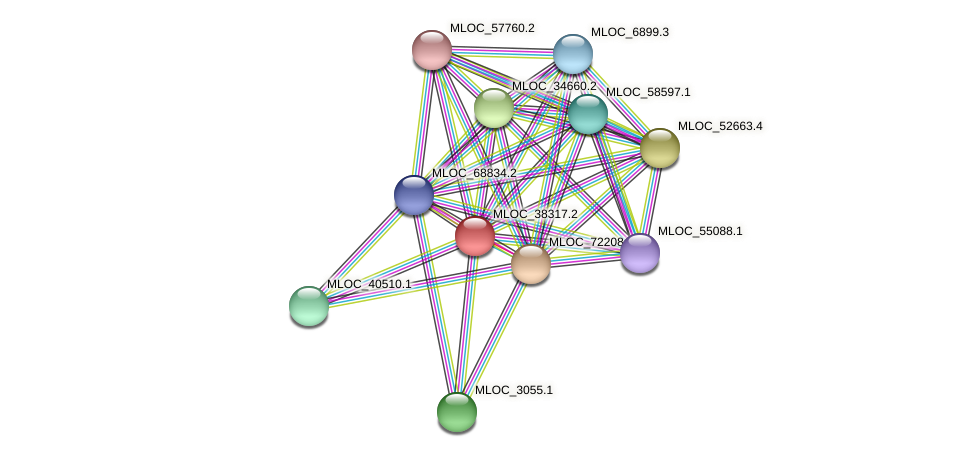 MLOC_38317.2 protein (Hordeum vulgare) - STRING interaction network