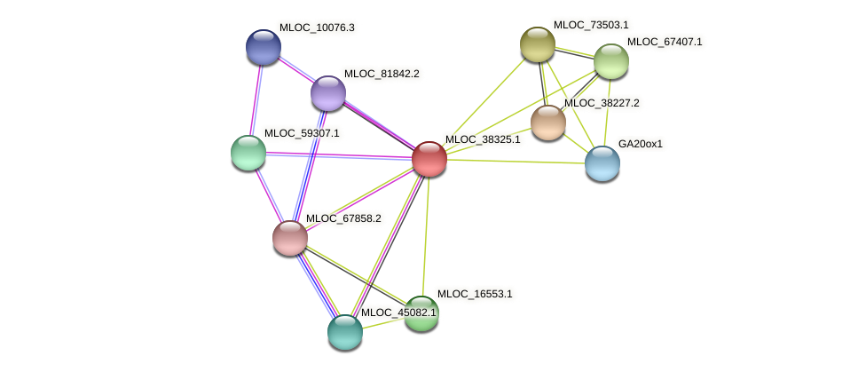 MLOC_38325.1 protein (Hordeum vulgare) - STRING interaction network