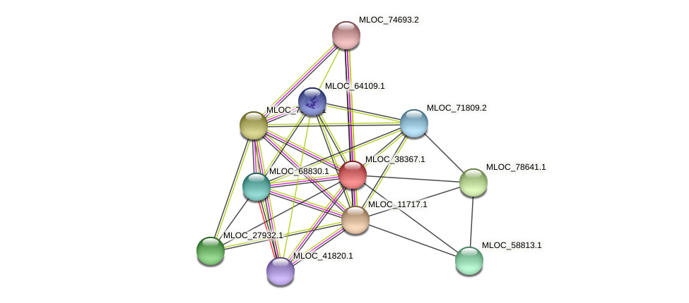MLOC_38367.1 protein (Hordeum vulgare) - STRING interaction network