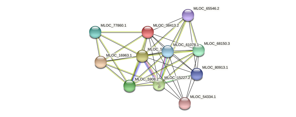 MLOC_38413.2 protein (Hordeum vulgare) - STRING interaction network