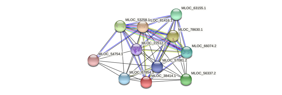 MLOC_38414.1 protein (Hordeum vulgare) - STRING interaction network