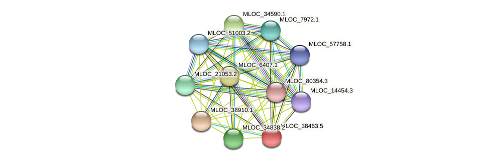MLOC_38463.5 protein (Hordeum vulgare) - STRING interaction network