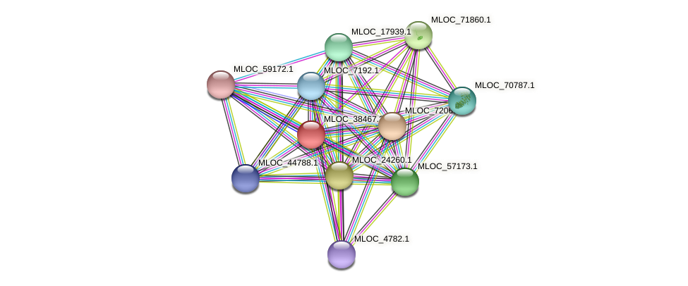 MLOC_38467.3 protein (Hordeum vulgare) - STRING interaction network