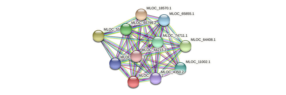 MLOC_38489.2 protein (Hordeum vulgare) - STRING interaction network