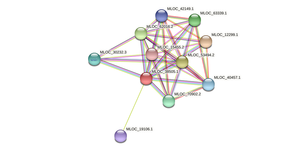 MLOC_38505.1 protein (Hordeum vulgare) - STRING interaction network