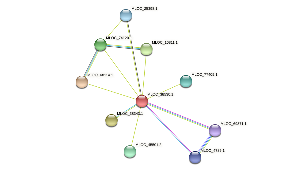 MLOC_38530.1 protein (Hordeum vulgare) - STRING interaction network