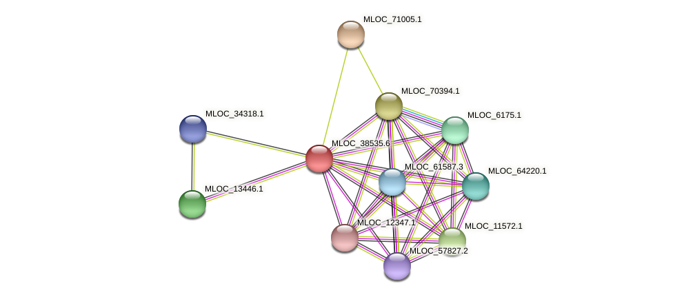 MLOC_38535.2 protein (Hordeum vulgare) - STRING interaction network