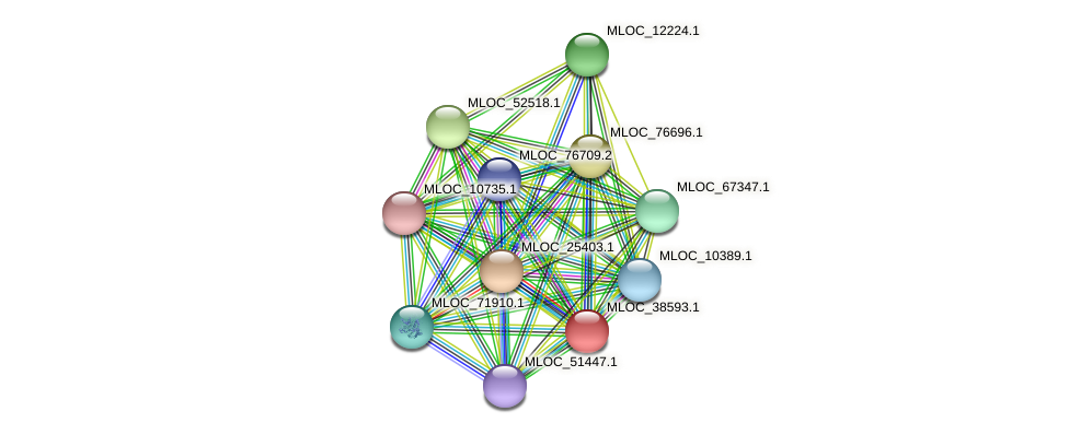 MLOC_38593.1 protein (Hordeum vulgare) - STRING interaction network
